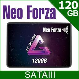 ~協明~ Neoforza 凌航 NFS01 120GB 2.5吋 SATAIII SSD / 全新三年保固