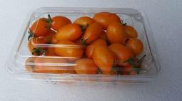 農民自售,產地直送-橙蜜香小蕃茄降價了,每盒只要70元(1斤),15斤免運.買越多.越便宜喔.,歡迎團購.