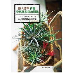 懶人植物新寵 空氣鳳梨栽培圖鑑