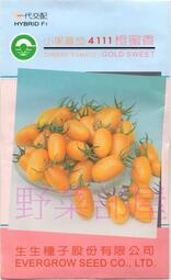 【野菜部屋~】L35 橙蜜香小蕃茄種子50顆 , 糖度高 , 知名品種 , 每包170元 , ~