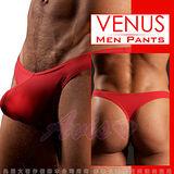 VENUS 低腰性感激凸丁字褲-7色