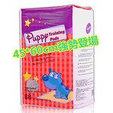【Huppy】哈比狗狗訓練尿布墊1包裝(45x60cm)