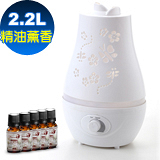 Warm雙噴頭香氛負離子超音波水氧機(W-220白)+贈澳洲單方純精油10mlx5瓶
