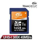 Team 十銓科技 16GB SDHC 高速 UHS-1 記憶卡