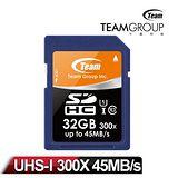 Team 十銓科技 SDHC UHS-1 32GB 高速記憶卡