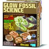 《4M挖掘考古》Glow Fossil Science 夜光化石科學