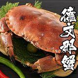 海鮮王 英國巨碩德文郡蟹*1隻組 900g/隻