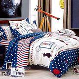 美夢元素 天鵝絨 涼被床包組 愛尚巴黎-雙人加大四件式