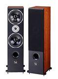 Audio King歌唱專業用喇叭 RA-880