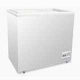 歐規 ACFA 玻璃式冷凍櫃【2尺4冰櫃】型號:NI-228