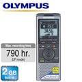 【 大林電子 】 Olympus 德明公司貨 VN731PC 專業型 數位錄音筆 ( 2GB )