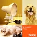 奇恩舖子【寵物保暖燈】CNE-13115大喇叭夾燈白色+300W調光線/不含燈泡