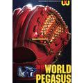 「野球魂」--2012年日本「WORLD PEGASUS」棒球壘球目錄型錄(29頁)已到貨!可立即寄出!