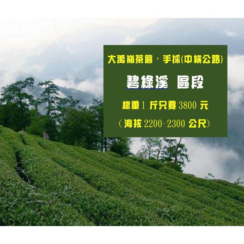 大禹嶺茶區,手採,中橫公路、碧綠溪段。總重1斤只要3800元 、(海拔2200-2300公尺)