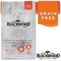 BLACKWOOD 柏萊富《全犬│鮭魚&豌豆》無穀低敏挑嘴配方15LB/6.8kg