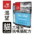 *GOLD*【左側可領折價券100元】Orijen渴望貓糧《六種鮮魚+海藻 配方》1公斤