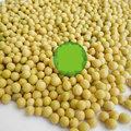【芽苗種子-黃豆芽-300g-包】小黃豆 芽菜專用 高發芽率 豆芽 優質黃豆,約300g/包,3包/組-5101003