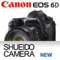 集英堂写真機【全國免運】CANON EOS 6D 機身 + EF 24-105mm F4 L IS USM鏡頭 平輸 / 一年保固