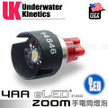 【詮國】美國 UK 4AA eLED Zoom Lamp Module 燈泡組(單顆裝) #14846