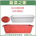 【蔬菜之家005-L301】90公分磚紋長槽(白色.珊瑚紅)