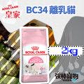 【強棒寵物 火速出貨】法國ROYAL CANIN 皇家貓飼料【離乳貓 BC34】2kg