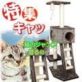 讓貓咪上下運動☆貓跳台樓梯遊戲屋 (附樓梯)