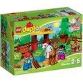 LEGO duplo 樂高得寶~樂高得寶幼兒系列~Animals 森林小動物 LEGO 10582 (66500598)
