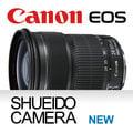 集英堂写真機【全國免運】CANON EF 24-105mm f/3.5-5.6 IS STM 標準變焦鏡頭
