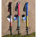 【大山野營】中和 Exponent 7075航鋁合金登山杖 健行杖 EVA握把快扣調整 TNR-075 非komperdell leki