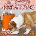 【三吉米熊】日本LUSMO中小型狗狗貓用自動餵食器(三色可選)