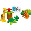 【LEGO樂高】得寶系列 10801 動物寶寶