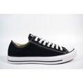 《CONVERSE》 男.女低筒帆布鞋 基本款Chuck Taylor All Star系列 (M9166C)