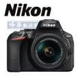 【2/28前送$1000家樂福禮券+延長保固6個月】Nikon D5600 + 18-55mm VR 【6期0利率,送32GB+清保組】 國祥公司貨 d5500 後繼