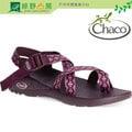 《綠野山房》Chaco美國 女 越野運動涼鞋 CHACOGRIP Z/2 CLASSIC 耐磨防滑 夾腳款 非TEVA 紫色棉襖 CH-ZCW02-HC42