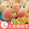 【築地一番鮮】日本青森代表作TOKI水蜜桃蘋果禮盒組(公爵)18顆/5kg