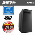 微星H110平台【生活主張】Intel第七代 G4600雙核 SSD 120G效能電腦
