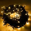 LED聖誕燈 10米100燈 110V 防水燈串 可串 / 聖誕樹 / 冰條燈 / 耶誕燈 / 帳篷燈