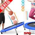 兩用40吋彈跳床(斜角跳跳床)C144-40B藥球籃板傾斜面蹦蹦床斜式跳跳樂彈簧床彈跳樂反彈架器兒童遊戲床Medicine Ball Rebounder推薦哪裡買