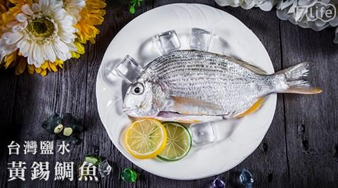 只要147元即可享有原價399元台灣鹽水黃錫鯛魚(班頭魚)1包(250g±10g/包)只要147元即可享有原價399元台灣鹽水黃錫鯛魚(班頭魚)1包(250g±10g/包),購滿14包免運。