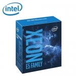 Intel IntelR XeonR E5-2620 v4 中央處理器