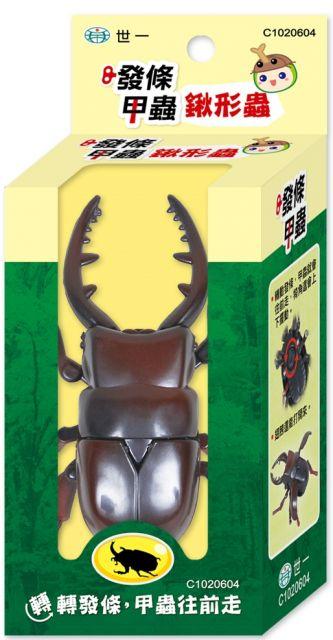 發條甲蟲:扁鍬形蟲