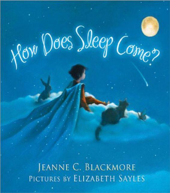 HOW DOES SLEEP COME ?(外文書)