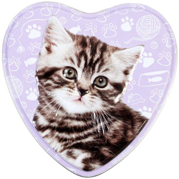 Kitten Activity Tin