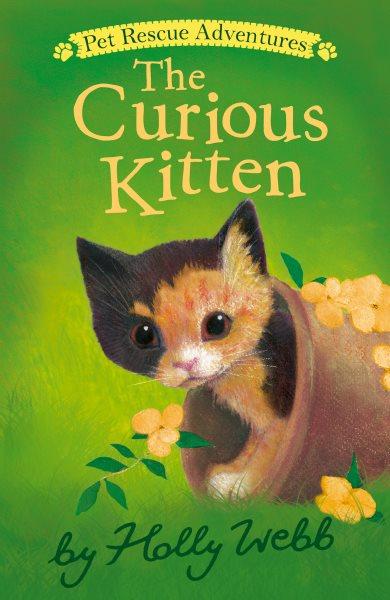 The Curious Kitten