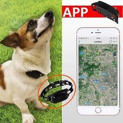 防水寵物定位器犬貓GPS/WIFI定位追蹤器動物寵物項圈防丟項圈