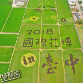 2018年台中世界花卉博覽會(台中花博)門票[一套兩張]