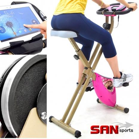 【SAN SPORTS 山司伯特】雙軸飛輪式磁控健身車