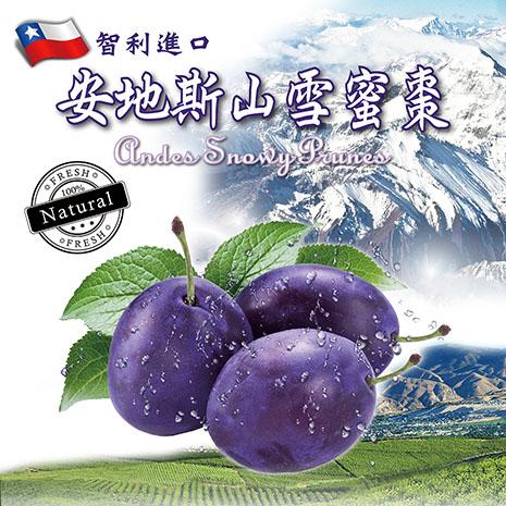 《8大保證/不含防腐劑》智利進口安地斯山雪蜜棗/蜜棗/蜜棗乾 100G (10包)