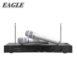 EAGLE 專業雙頻無線麥克風組(EWM-P28) 送Ardi手機藍芽遙控器