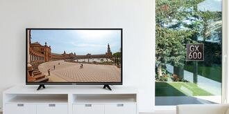 Panasonic 國際牌 43吋 4K液晶電視 智慧雜訊抑制 高解析度 TH-43GX600W